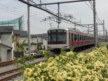東急の車両1.jpg