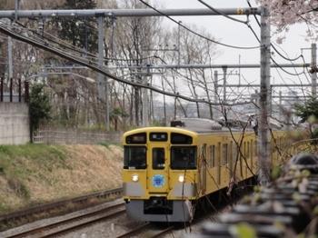 桜9000系.jpg