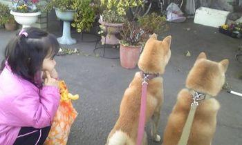 お散歩.jpg