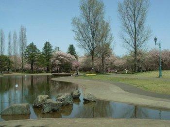 彩の森公園.jpg